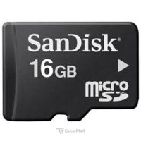 Photo SanDisk microSDHC 16Gb